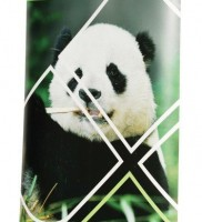 rollup en bambou avec impression poster film