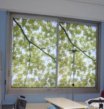 stickers sur fenêtre